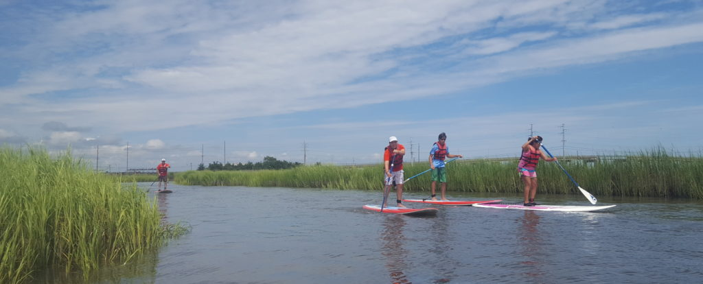 Book a Paddleboard Lesson with us!